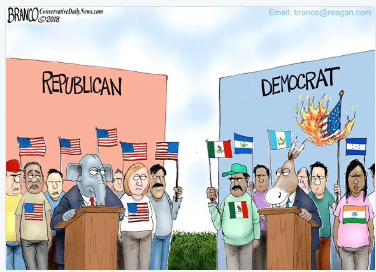 Image result for branco cartoons medicare for all