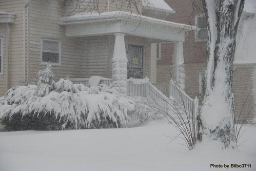 snowy-winter-scenes-5.jpg
