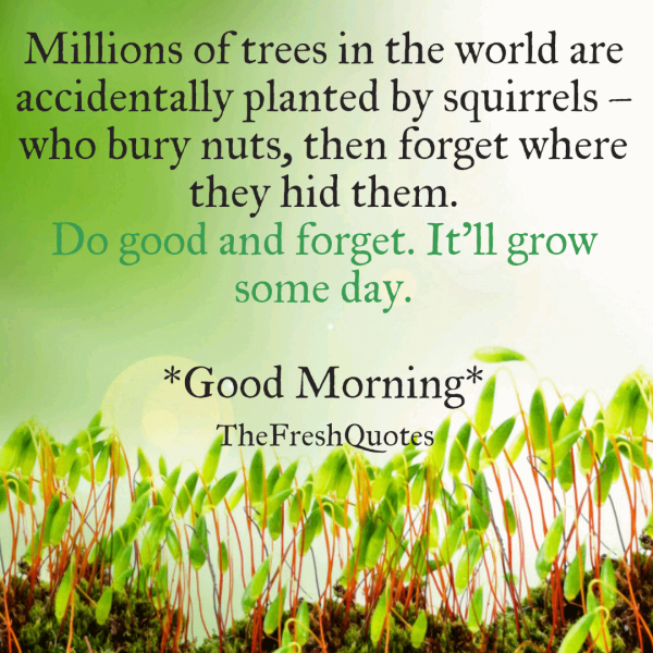 Do-good-and-forget.-It'll-grow-some-day.png