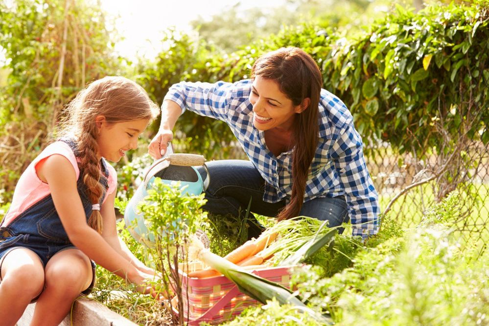 garden picnic.jpg