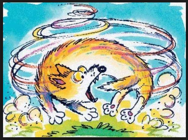 Dog Chasing Tail.png
