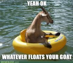 floatsurgoat.jpg