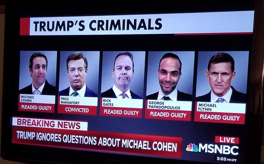 Trumps Criminal Conspiracy.jpg