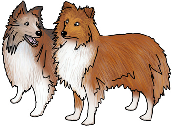 -Sheltie Sisters.png