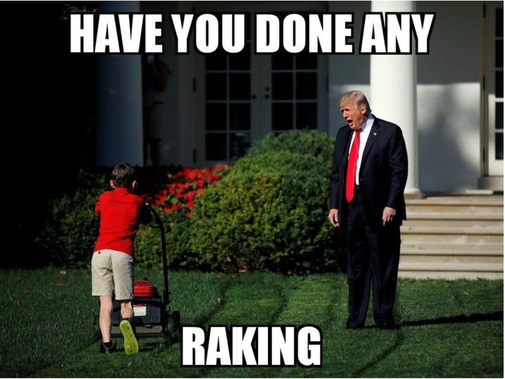 Trump Screaming at kid mowing.png