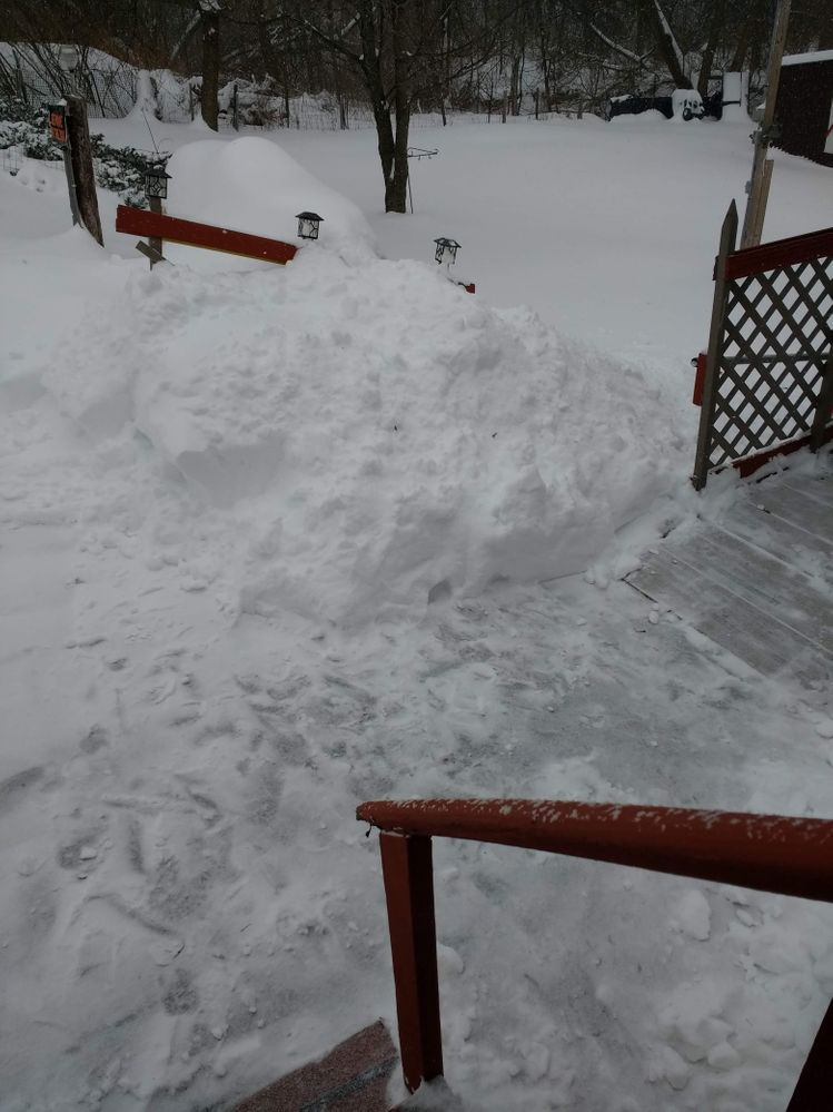 Jan 20,2019 Back porch...SNOW.jpg