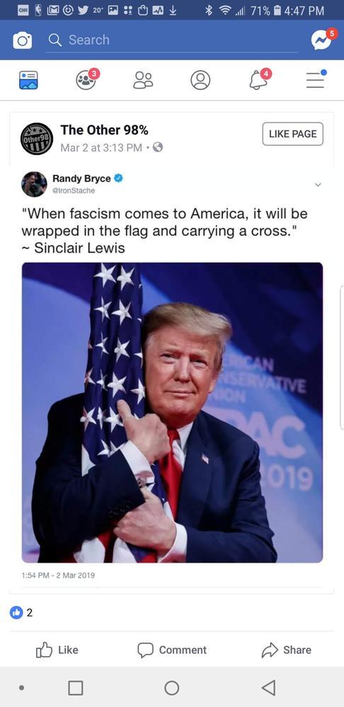 Fascism in America.jpg