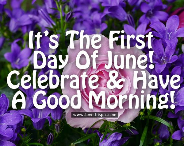 332242-It-s-The-First-Day-Of-June-Celebrate-Have-A-Good-Morning- (1).jpg