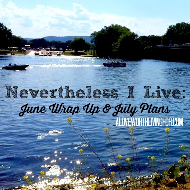 Nevertheless+I+Live_+June+Wrap+Up+&+July+Plans+by+A+Love+Worth+Living+For+Blog+&+Shop.jpeg