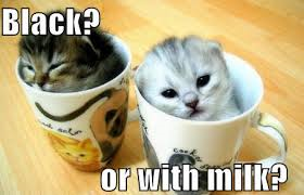 Black or with milk cat.png