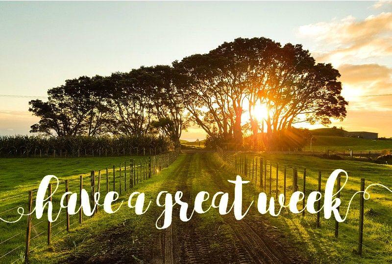 good-week_010.jpg