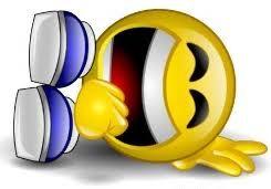 rotfl emoji.jpeg