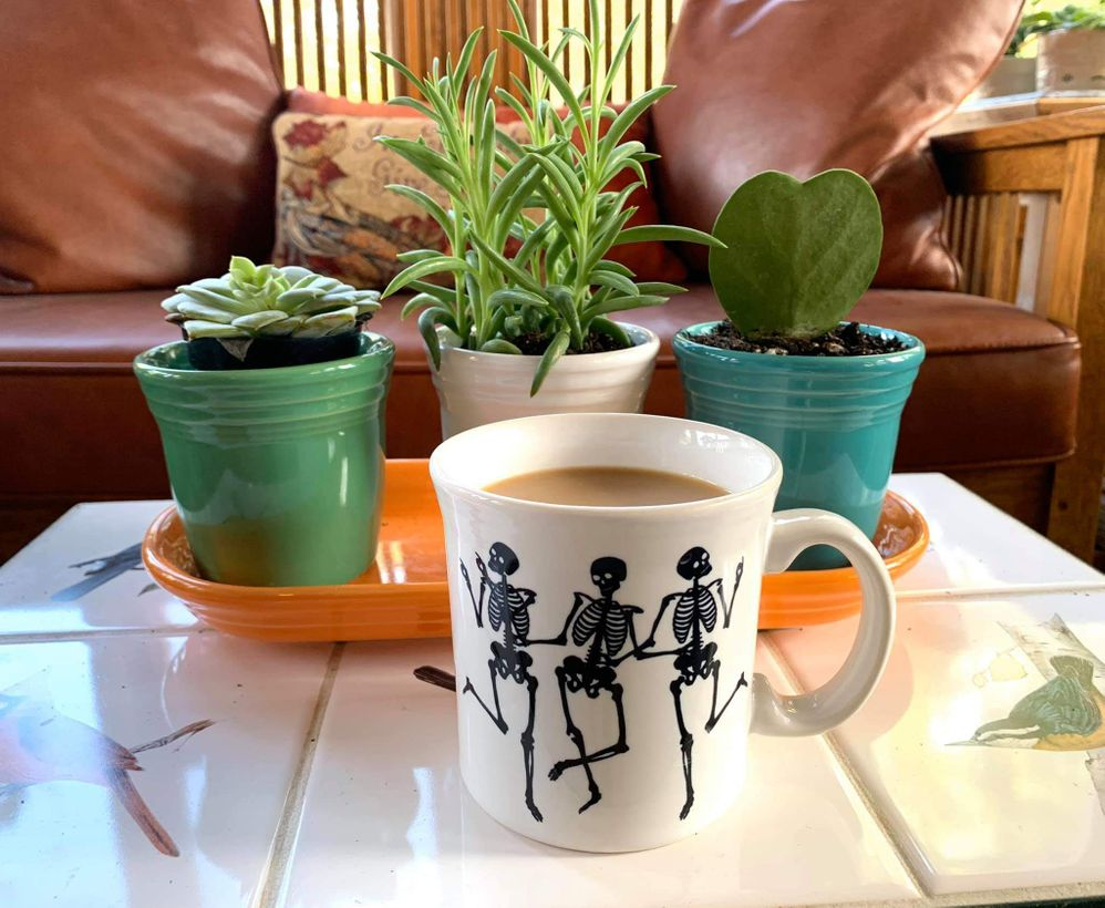 Fiestaware mug and plant pots