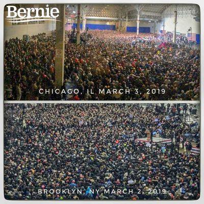 bernie crowds 2019.jpg