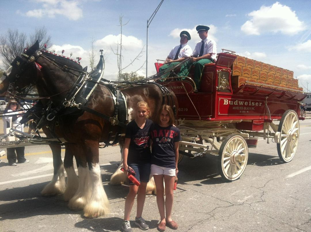 twins w clydesdales.jpg