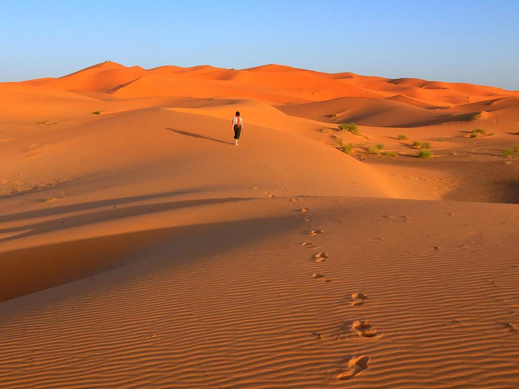 A_Walk_in_the_Desert_by_James_Samanen.jpg